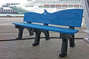 Dolphin Beachcomber