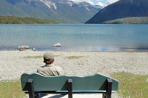 Beachcomber Seat installed at Nelson Lakes