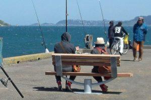 Seaview Memorial Seat on Petone Jetty